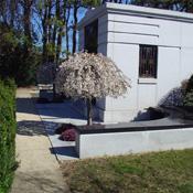 Cemetery Photo 2